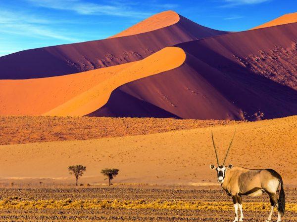 namibia-1200x853-1