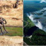 Eröffnungs Special- Kruger Park & die Victoria Falls!